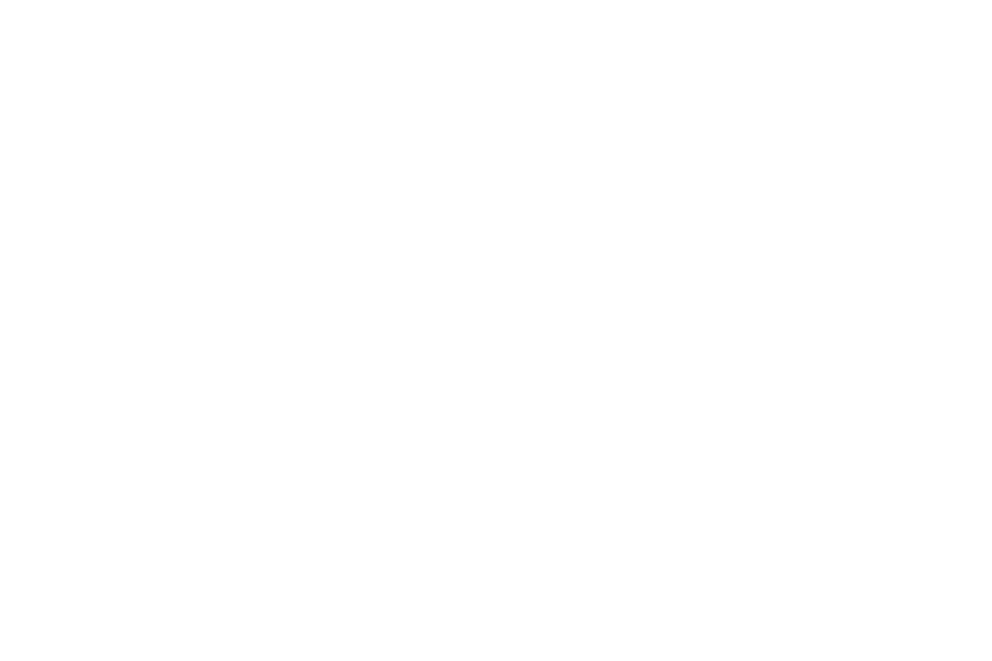 Purchases Benefit ALS Association North Carolina Chapter